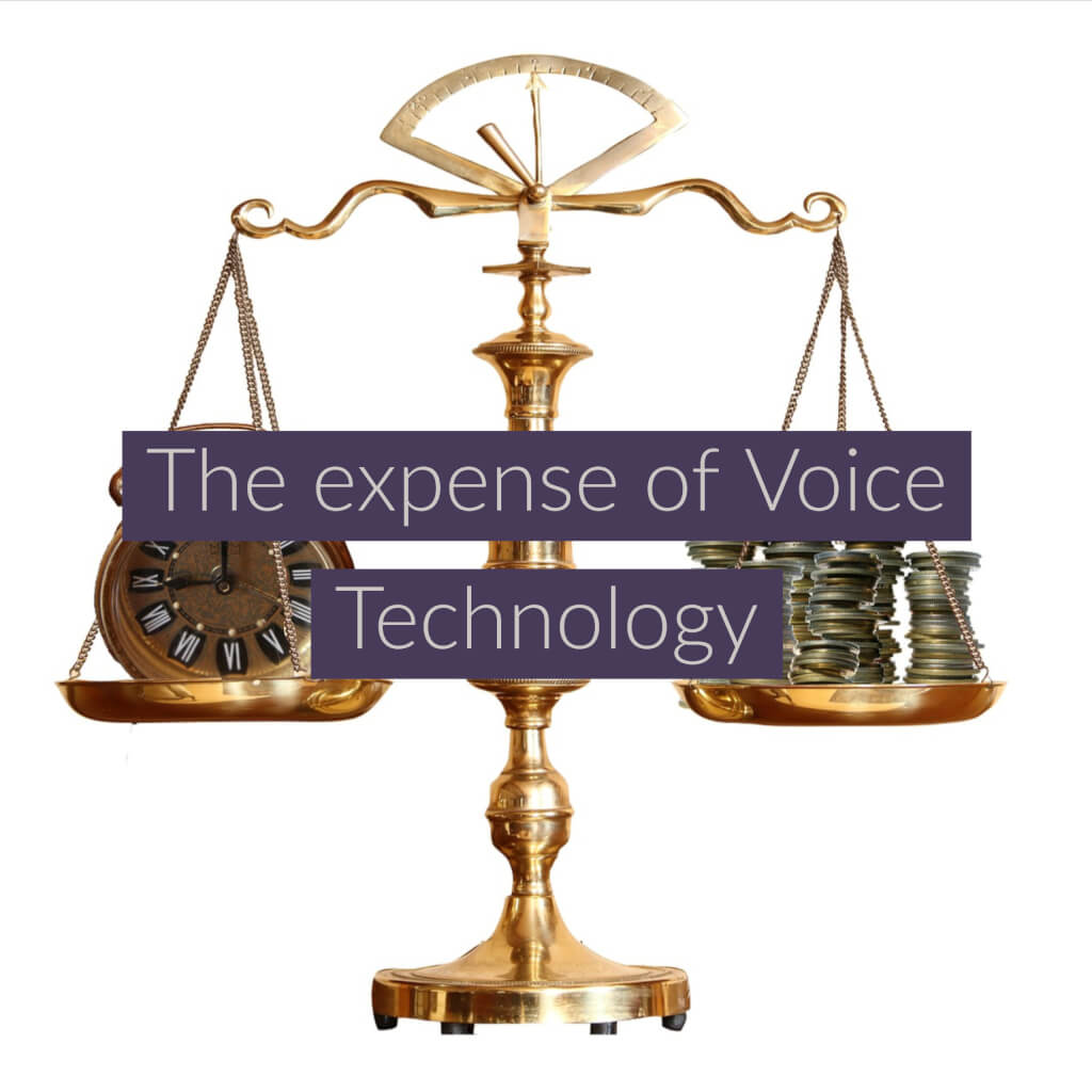 The expense of Voice Technology